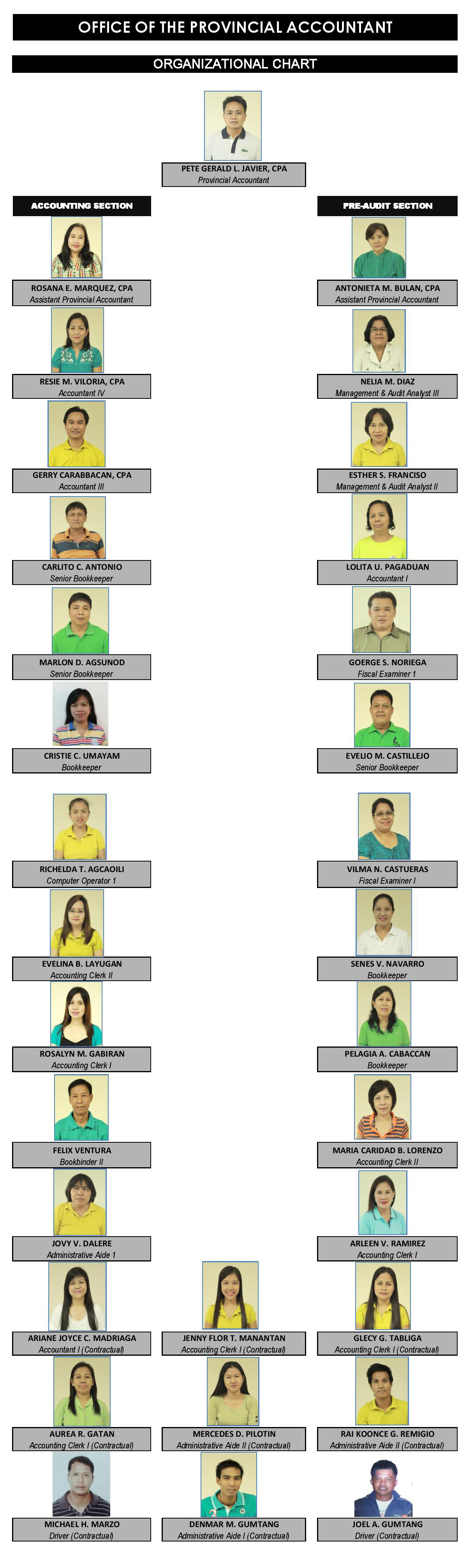 Provincial Accountant's Office Organizational Chart